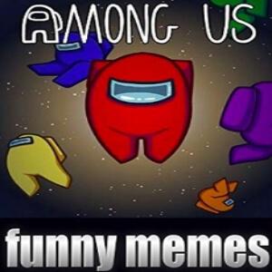 Libro memes graciosos personajes Among Us